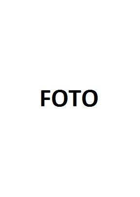MINISTERIO DE ECONOMÍA Y FINANZAS (MEF) :